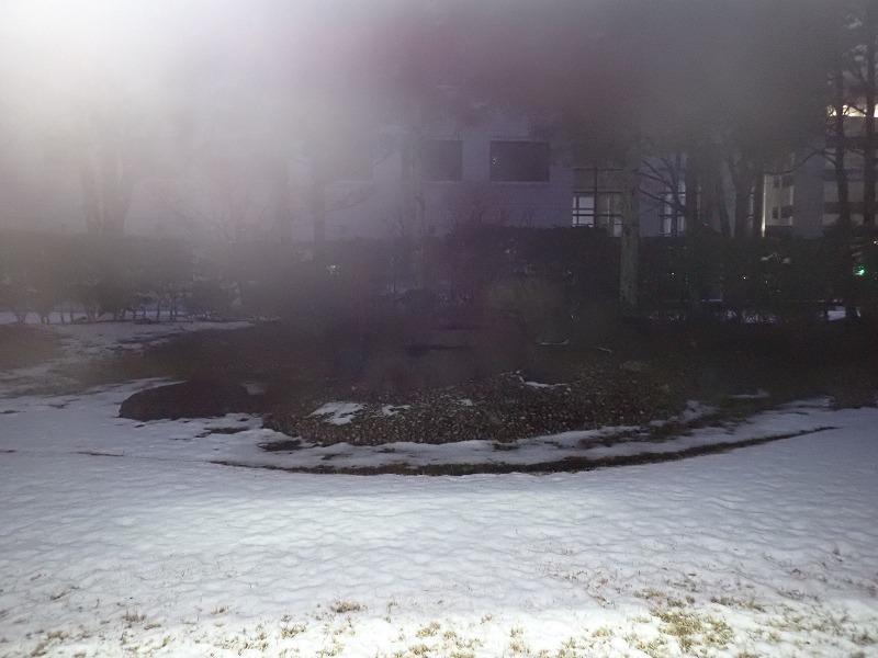 今年(2020年)の金沢は雪がない
